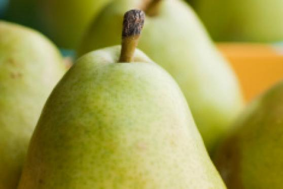 Photo: Bowl of fresh green pears