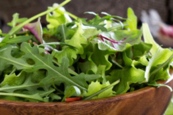Photo: Big bowl of green arugula lettuce