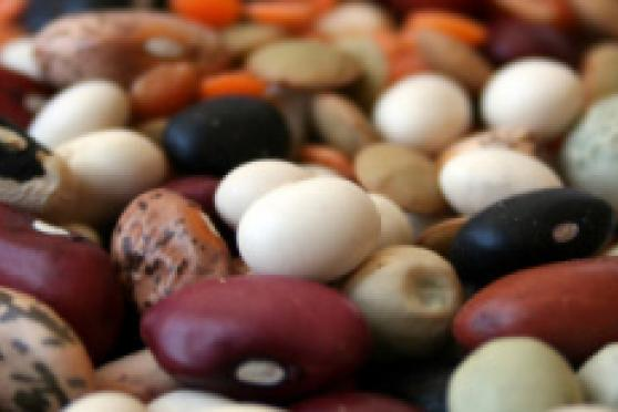 Photo: Pile of raw beans